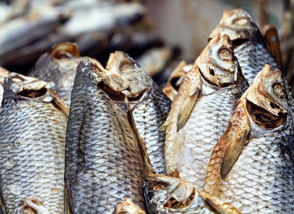 Под Астраханью изъяли более тонны вяленой рыбы